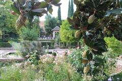 Alhambra 38