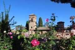 Alhambra gardens 4